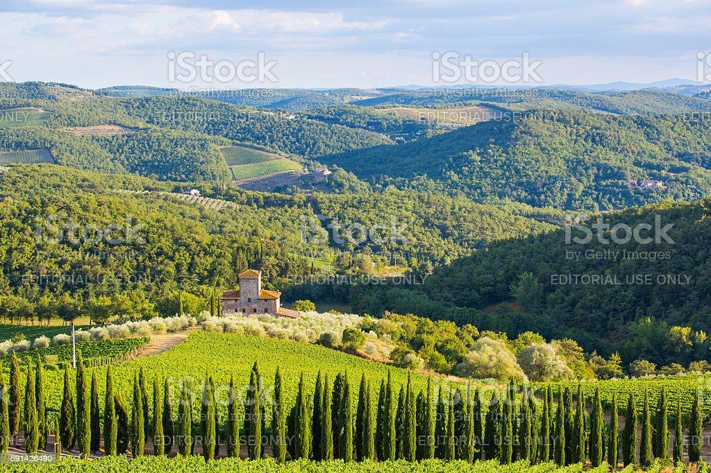 Castello di Albola estate stock photo