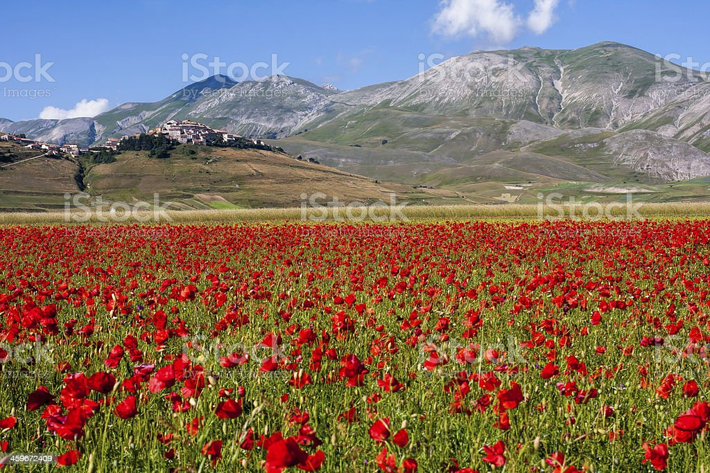 Castelluccio and Vettore mountain royalty-free stock photo