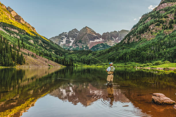 Casting in the Wilderness A fly fisherman makes a cast at sunset in the Maroon Bells wilderness near Aspen, Colorado. casting stock pictures, royalty-free photos & images