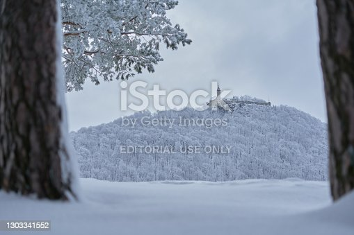 Owen, Germany - February 19, 2021: Castle also Stronghold (Teck) in winter on a gray cloudy morning, many trees on the hill, pine stem with snow in the foreground. Germany, Owen, Swabian alb.