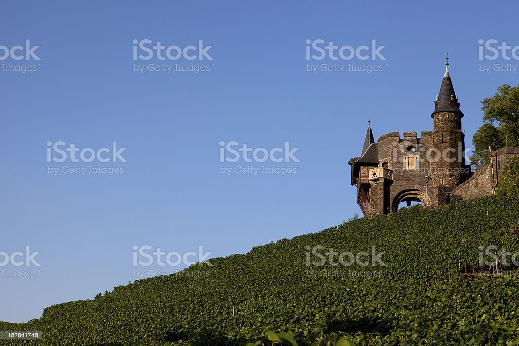 Castle and vineyard royalty-free stock photo