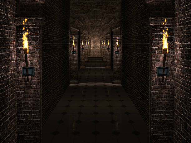 Castle corridor Dark medieval castle corridor with columns and torches. flaming torch stock pictures, royalty-free photos & images