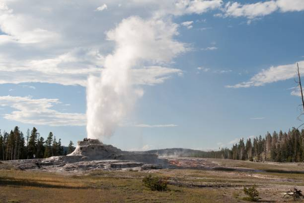 Castle Geyser in Yellowstone Park stock photo