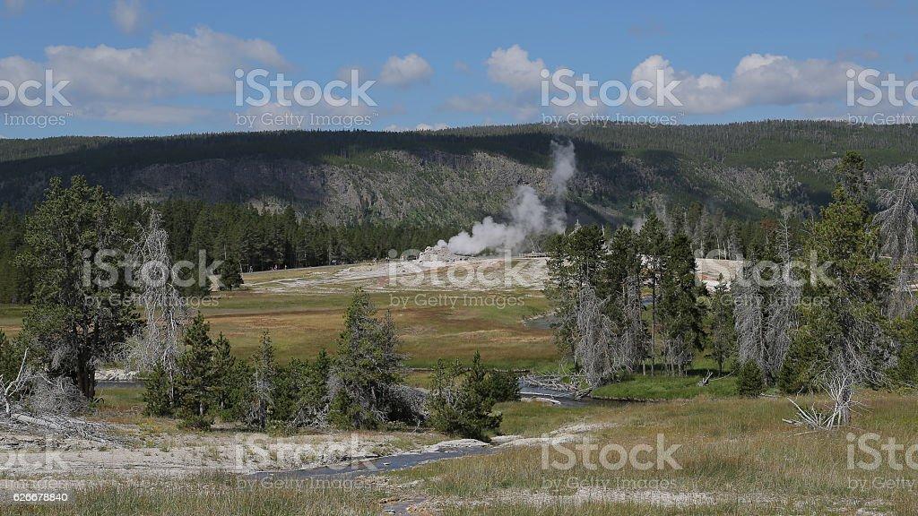 Castle geyser in Yellowstone, USA stock photo