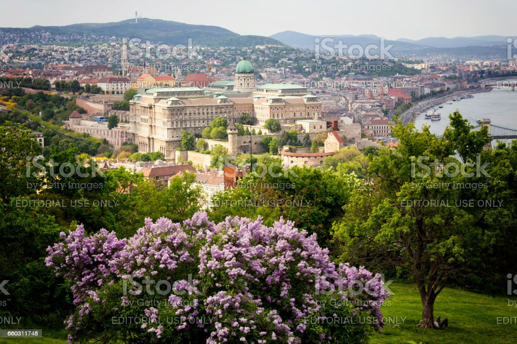 Castle Hill in Budapest during spring stock photo