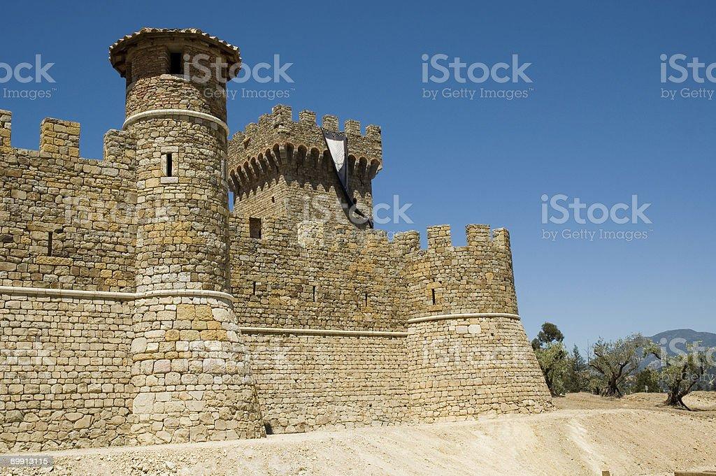 Castle in a Vineyard stock photo