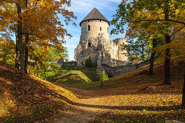 Castle in Cesis Castle in Cesis, Latvia latvia stock pictures, royalty-free photos & images