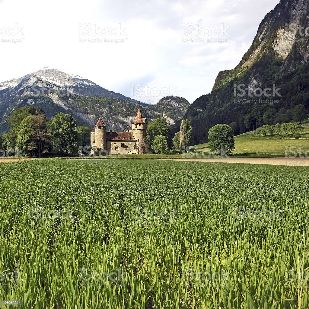 Castle in front of a mountain scenery royalty-free stock photo