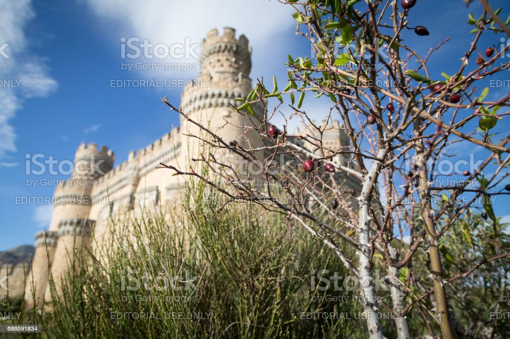 Castle in Manzanares el Real stock photo