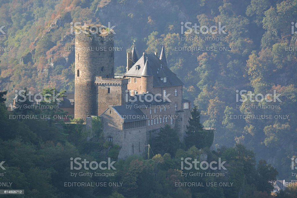 Castle in rhine valley stock photo