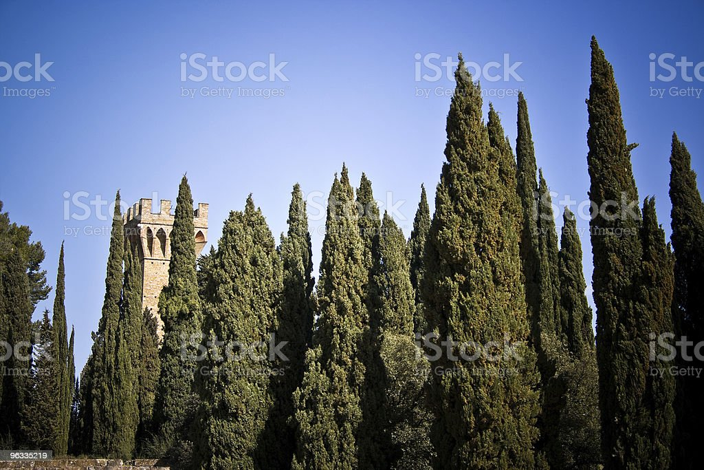 Castle in the forest stock photo