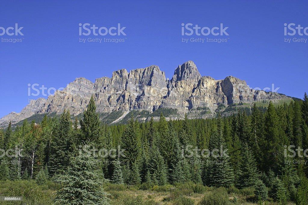 Castle Mountain royalty free stockfoto