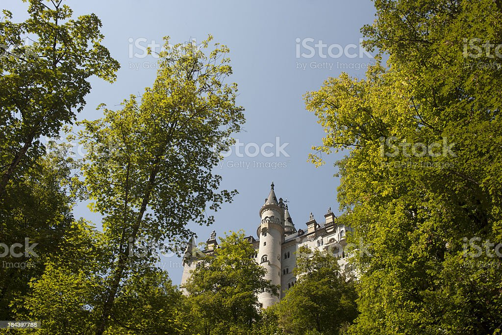 Castle Neuschwanenstein royalty-free stock photo