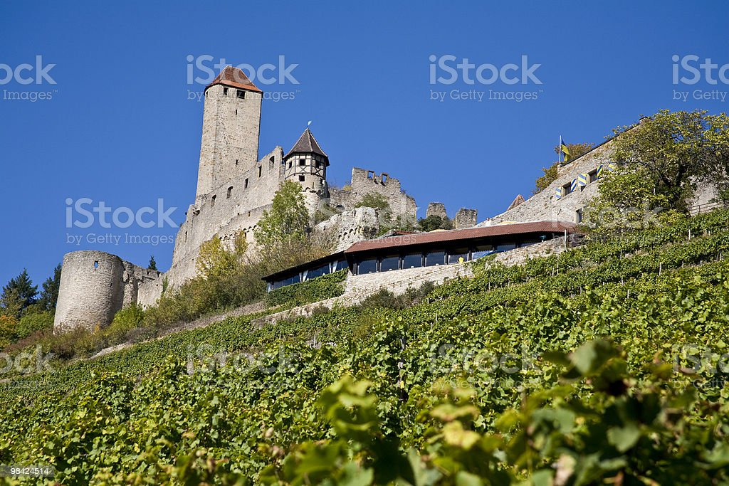 castle of Hornberg royalty-free stock photo