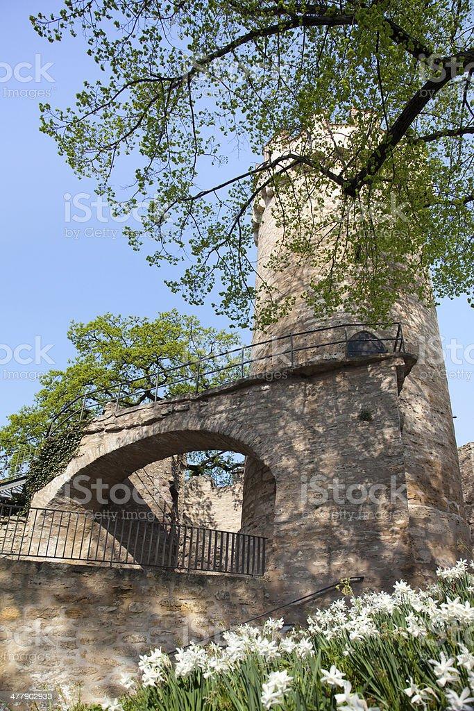 Castle Pulvertum Jena stock photo