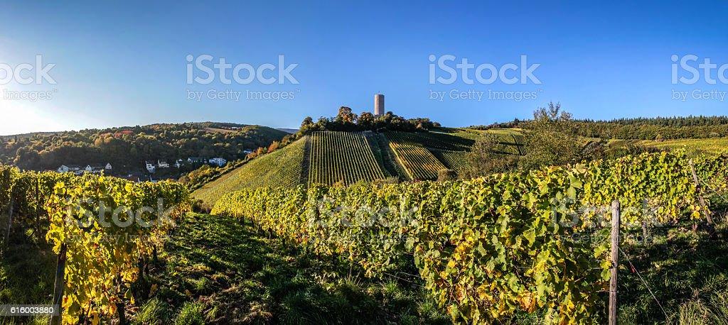 Castle Scharfstein in Kiedrich stock photo
