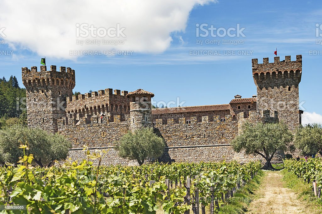Castle with Winery stock photo
