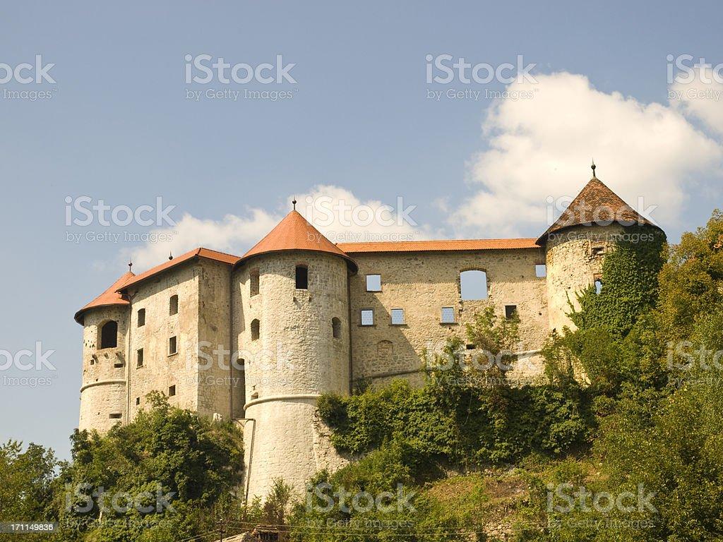 Castle Zuzemberk stock photo