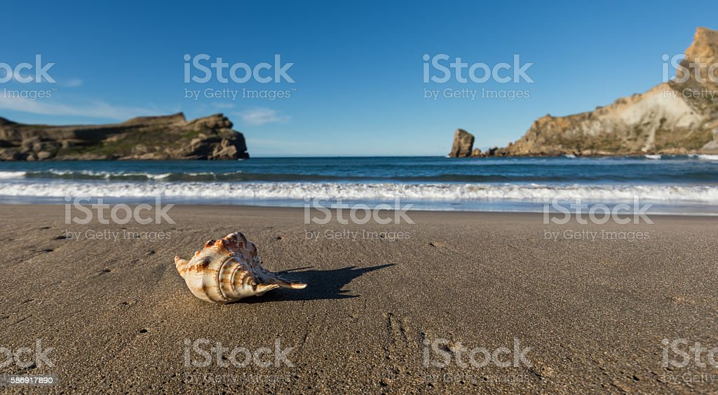Castlepoint Seashell Beach stock photo
