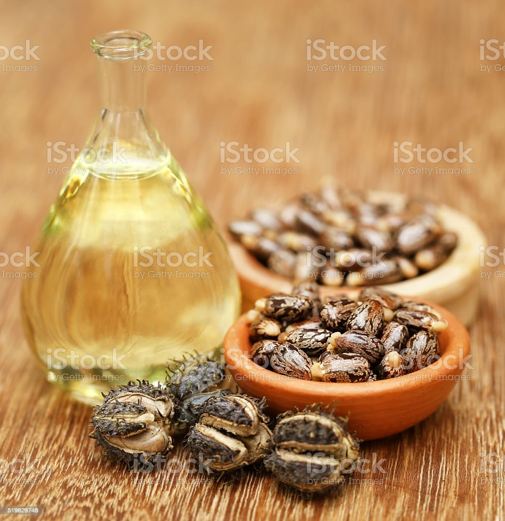 Castor beans and oil stock photo
