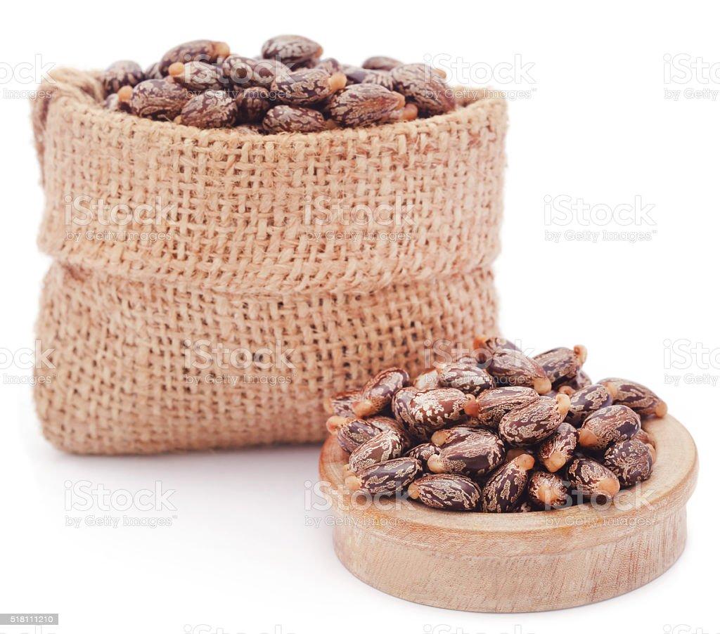 Castor beans stock photo