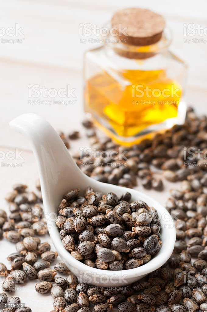 Castor oil with beans on wooden surface stock photo