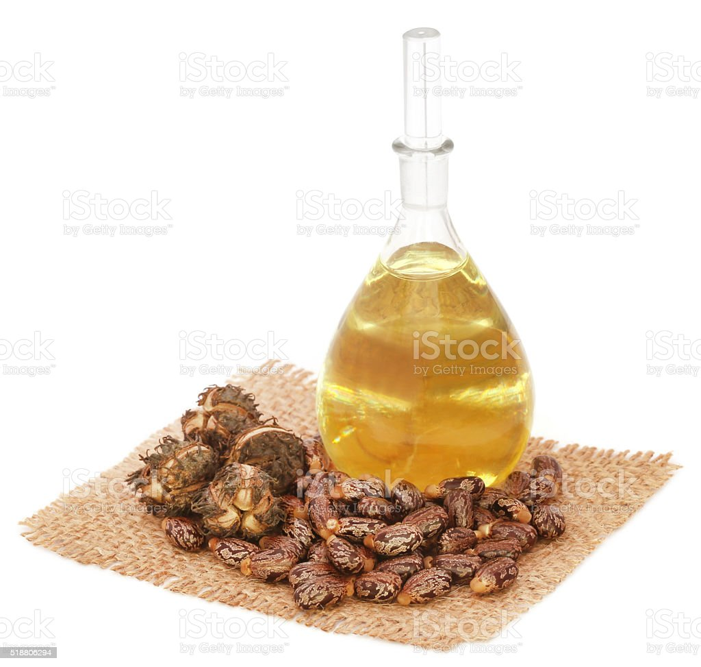 Castor oil with beans stock photo