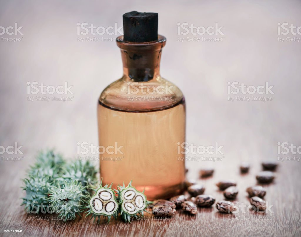 Castor oil with dry and green beans stock photo
