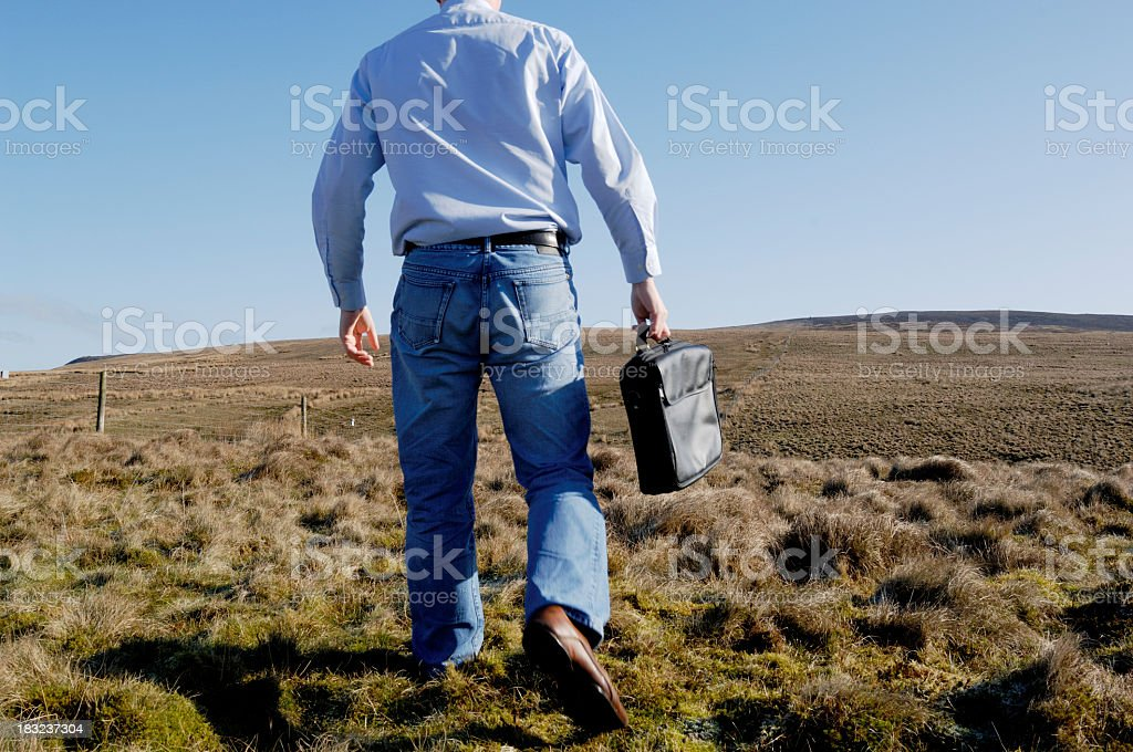 Casual businessman in field, conceptual stock photo