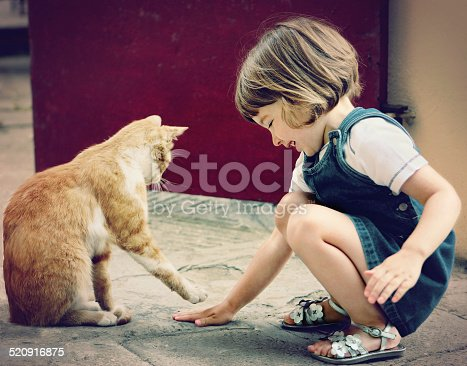 Cute child playing with a cat.