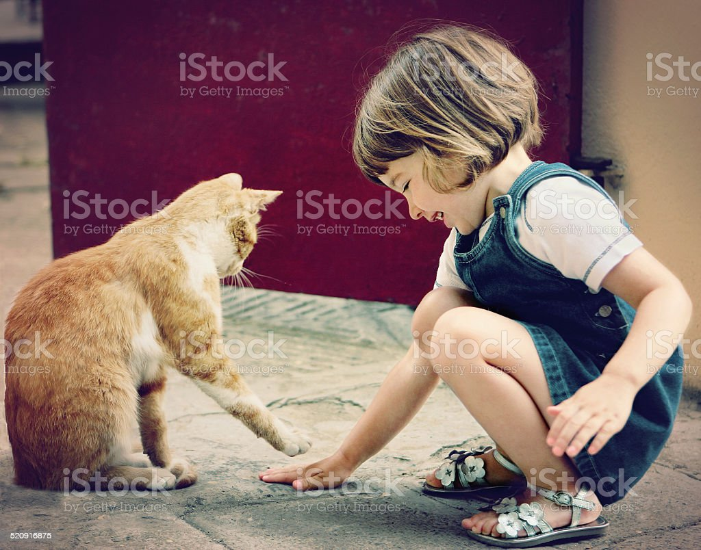 Cat and Child at Play stock photo