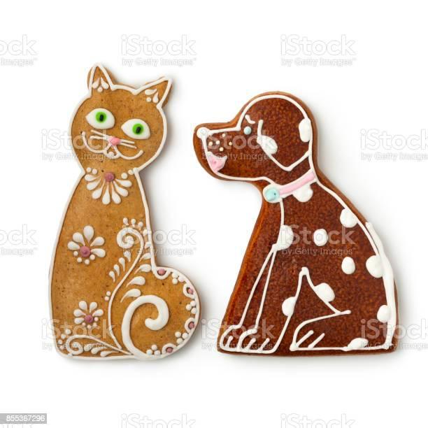Cat and dog ginger cookies picture id855367296?b=1&k=6&m=855367296&s=612x612&h=crv3qxgrjjfmgjp7kmisegcczlqtzqhjrdom2srcydo=
