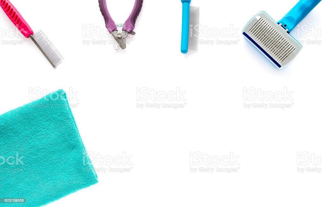 Cat and Dog Grooming Tools stock photo