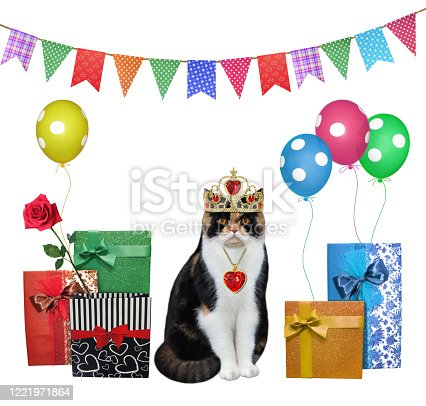 1085249444 istock photo Cat and his birthday gifts 2 1221971864