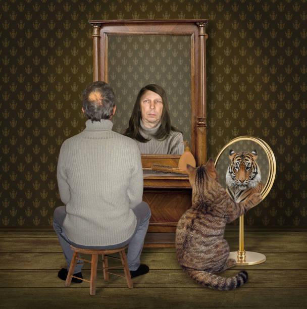 Lion mirror cat Lion