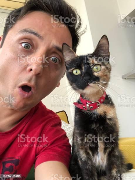 Cat and man looking at camera picture id1025795484?b=1&k=6&m=1025795484&s=612x612&h=kbq1ydlrrhrcoonyghj8gpjcvmuu47jsm1oq cg2r s=