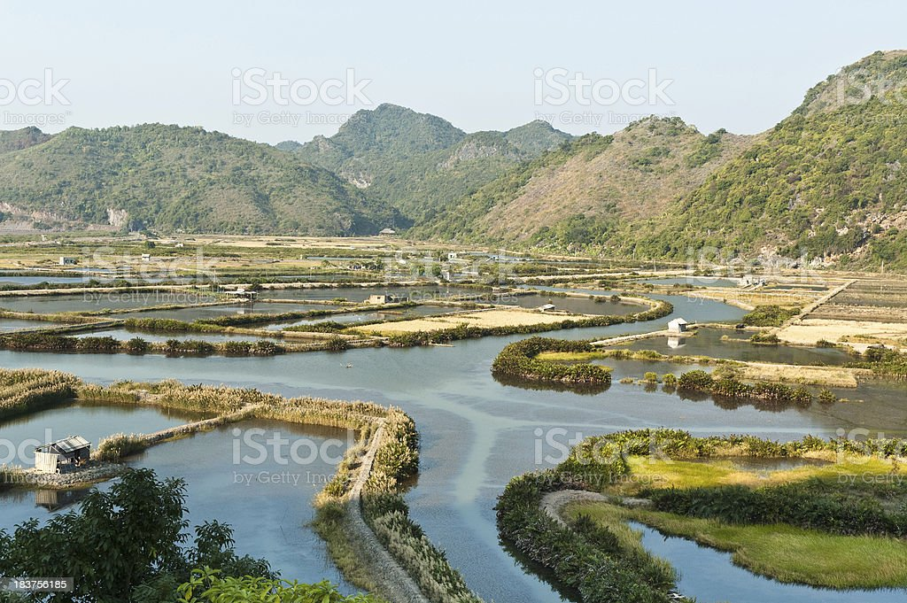 Cat Ba Island In Halong Bay, Vietnam stock photo