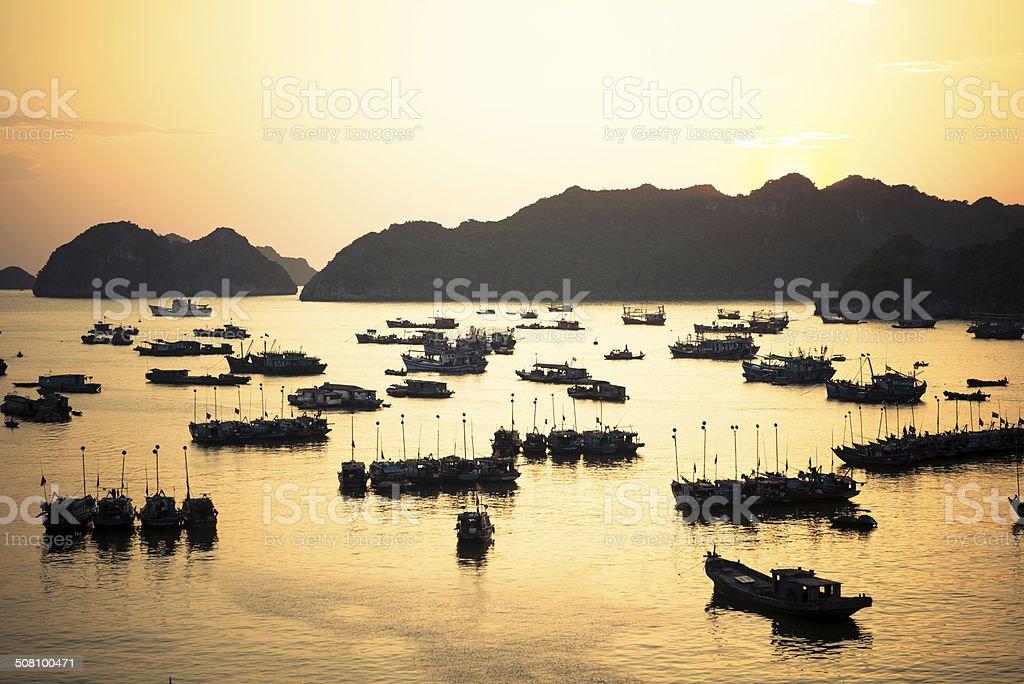 Cat Ba port sunset stock photo