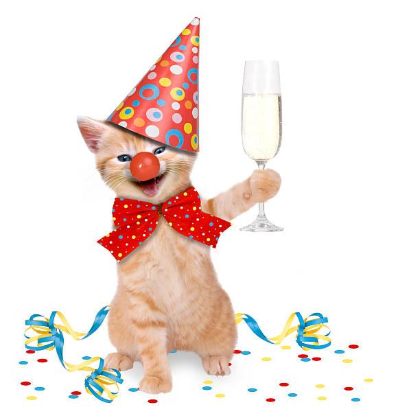 Cat carnival party picture id475413417?b=1&k=6&m=475413417&s=612x612&w=0&h=i4nfkj4xcbyww sxvbzk2jar5llso9d6 bfu2rqe6cq=