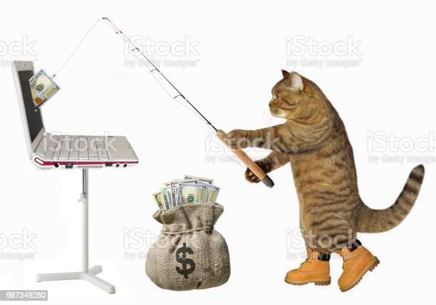 Cat catches dollars from the computer picture id987349280?b=1&k=6&m=987349280&s=612x612&h=sx17bidtn3yucialzgxjnyqsujwpdsdwdhbnh2nktr0=
