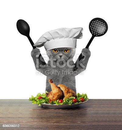 istock Cat chef is preparing chicken 636056312