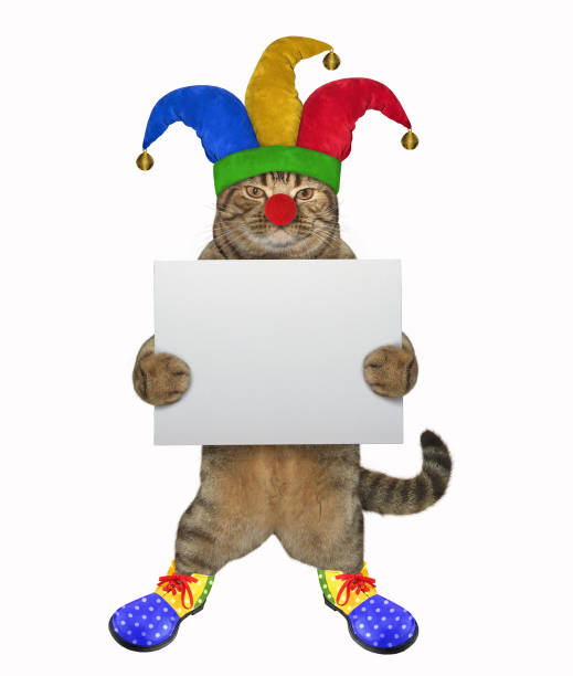 Cat clown with a blank poster picture id1138677994?b=1&k=6&m=1138677994&s=612x612&w=0&h=s7wrf7dizi9l l4tfqeq4nb28iarx7v9cvhcvews5rc=
