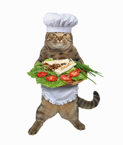 Cat cook with dinner picture id841224888?b=1&k=6&m=841224888&s=612x612&w=0&h=ni6qy1to6sqd9fai5bc9end14bn5lt4mehhsfzkut3m=