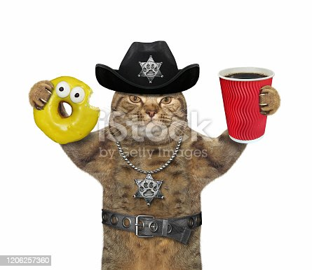 istock Cat cop with coffee and donut 2 1206257360