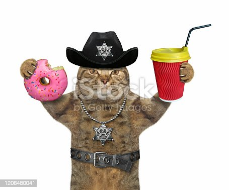 istock Cat cop with coffee and donut 3 1206480041
