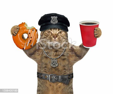 istock Cat cop with coffee and donut 1206400183