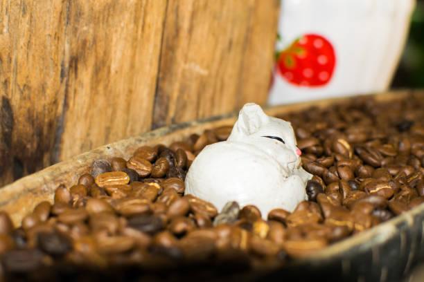 Cat dolls and coffee beans for interior decoration vintage closeup picture id962917032?b=1&k=6&m=962917032&s=612x612&w=0&h=fbcsm9dh06znyti nzhzywav3bbrubjc0l8tixtuvaw=