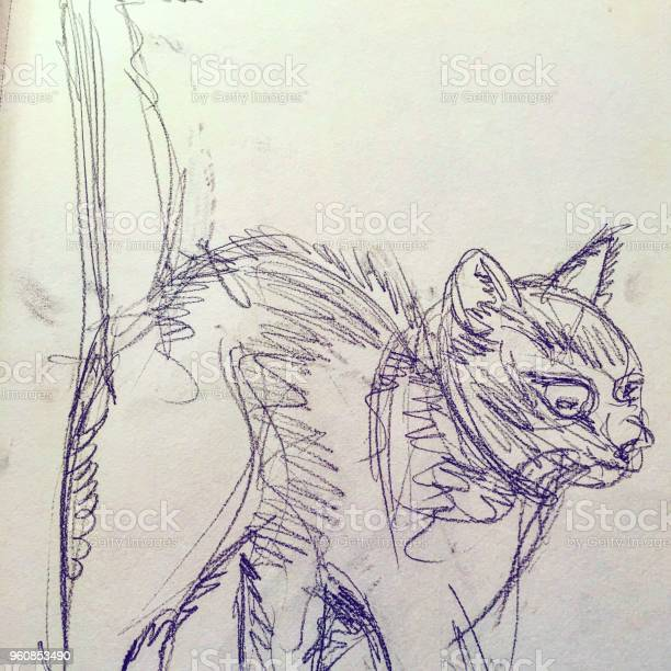 Cat drawing background unit isolate picture id960853490?b=1&k=6&m=960853490&s=612x612&h=i5lkjcc4rhbdxtoffwfu9yeptigmlyyrcbx8w2weoxe=
