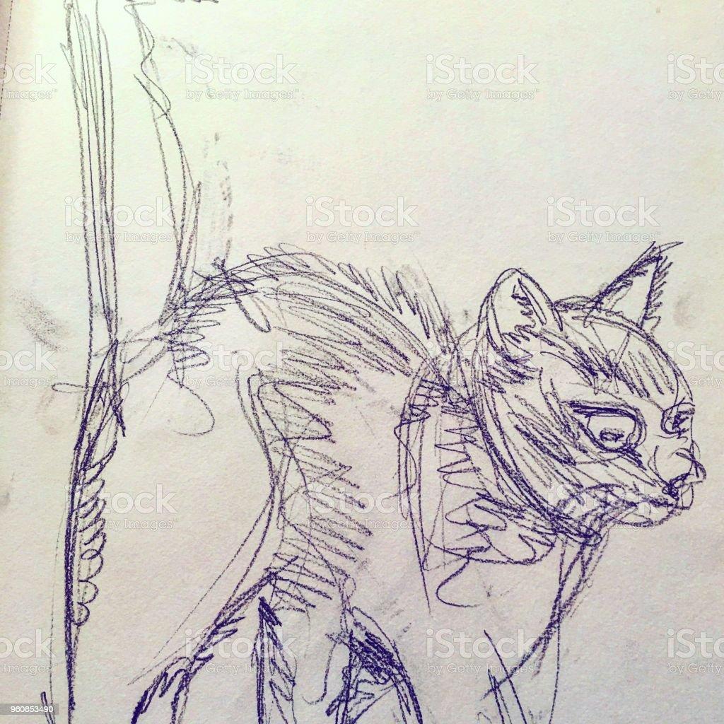 izole kedi çizim arka plan birimi stok fotoğrafı