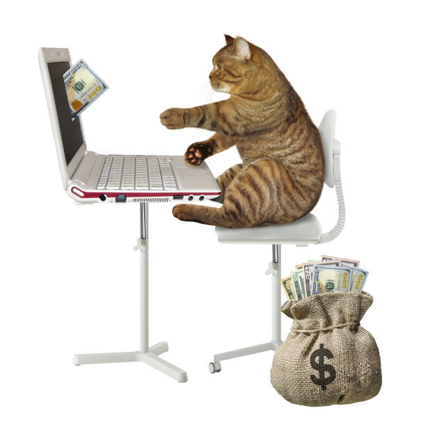 Cat earns money on the computer 2 picture id1140072098?b=1&k=6&m=1140072098&s=612x612&w=0&h=xwfqq3snkn3pmhf1wnvl8tnlw0w3ddqn1ubyweejzai=